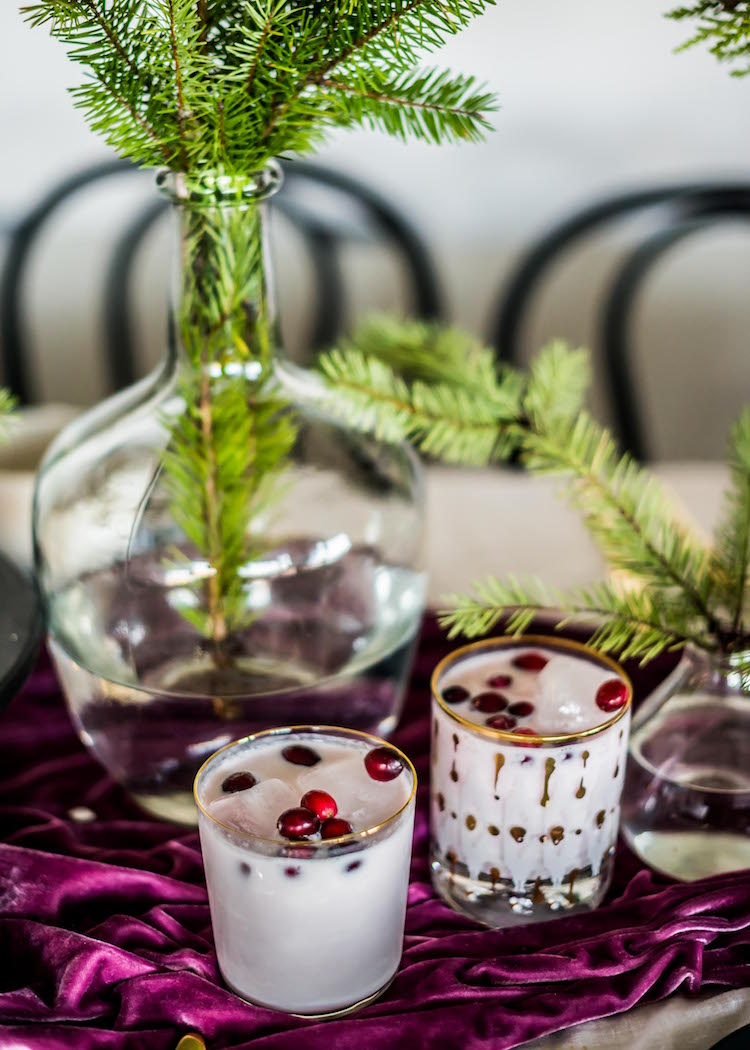 Coconut Cranberry Punch | recipe on craftandcocktails.co